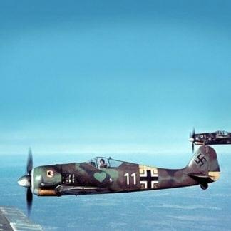 Fw190 A8 - JG54, Horst Ademeit